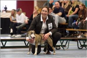 Honden Centrum Hilda te Wassenaar